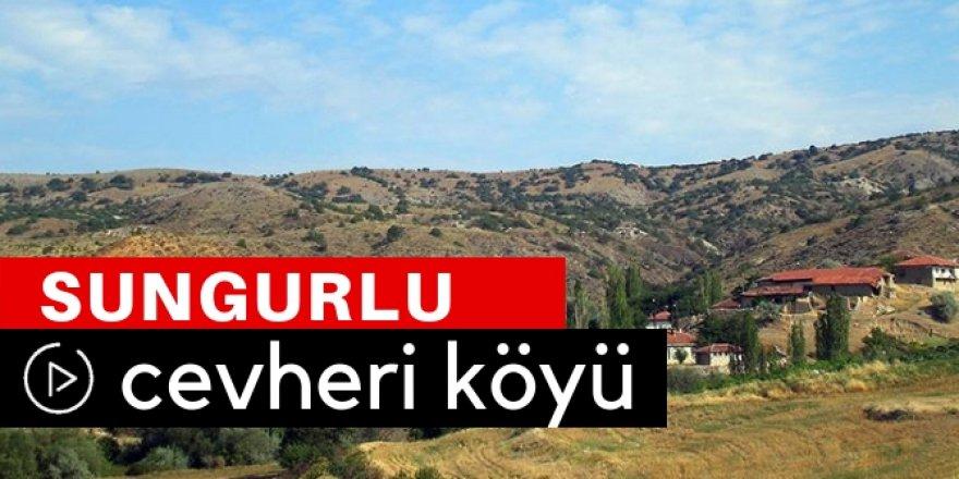 Cevheri Köyü Video